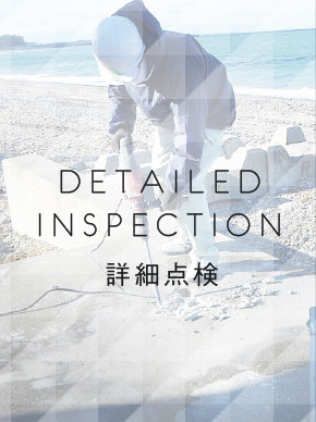 詳細点検 Detailed Inspection